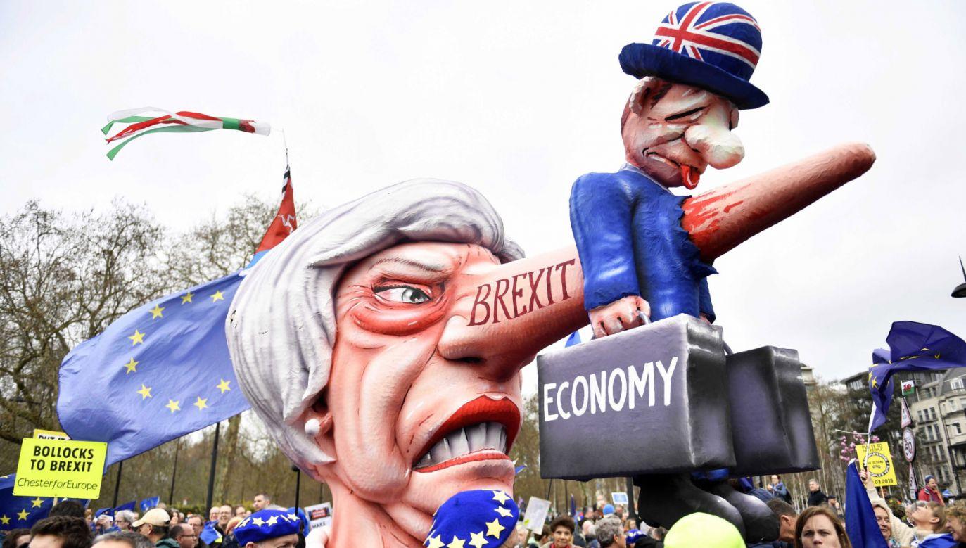 Demonstrujący domagają się przeprowadzenia drugiego referendum (PAP/EPA/NEIL HALL)
