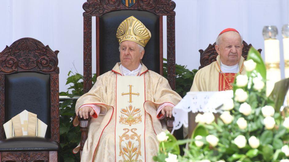 Fot. PAP Jacek Bednarczyk (3)