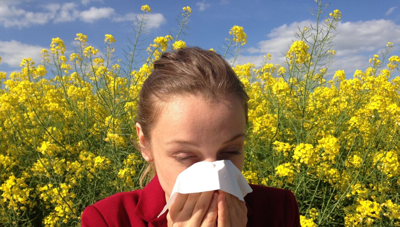 Allergies can cause cardiac arrest and chronic obstructive pulmonary disease, which is the fourth largest cause of death in Poland. Photo: Pexels