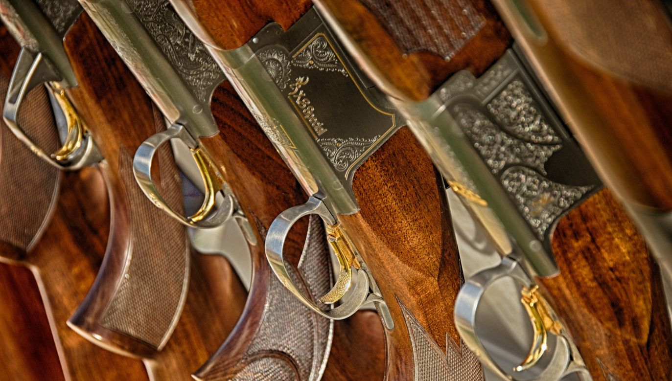 Gun ownership on the rise in Poland. Photo: Pixabay/Norm_Bosworth