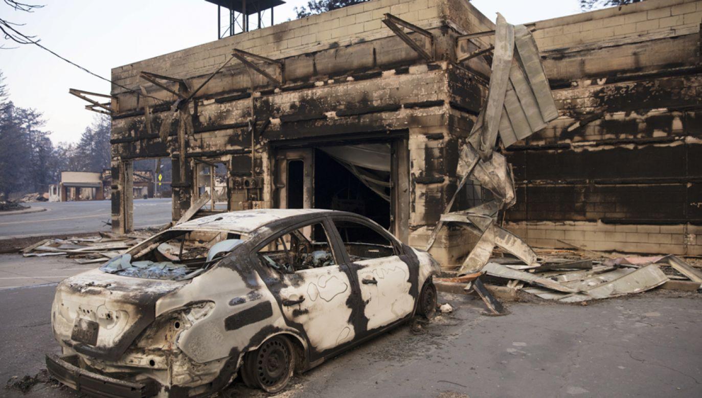 W wyniku pożaru zniszczonych zostało 12 tys. budynków (fot. PAP/EPA/PETER DASILVA)