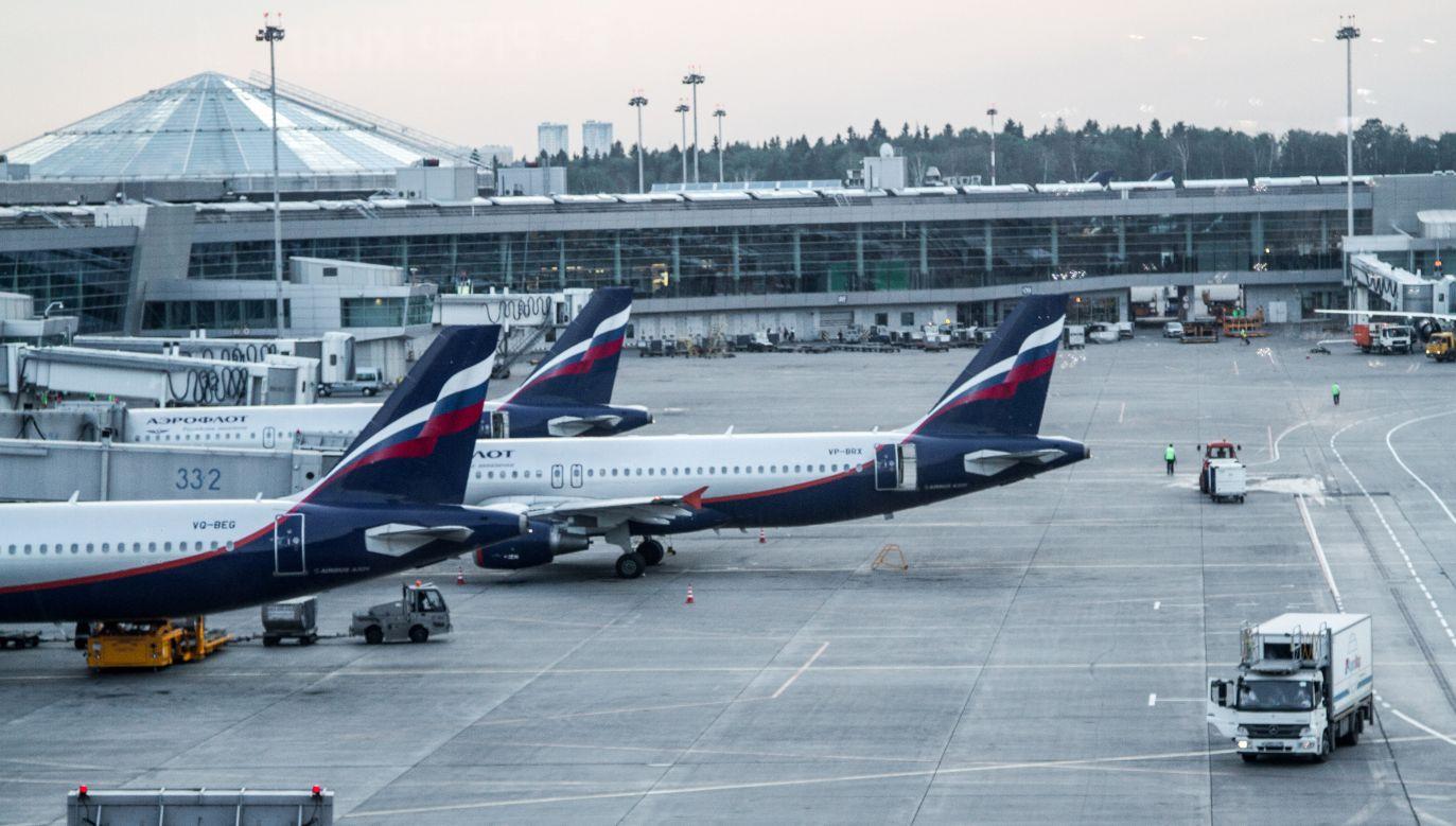 Samoloty w porcie lotniczym Moskwa-Szeremietiewo (fot. Wikimedia/Alexander Kalashnikov)