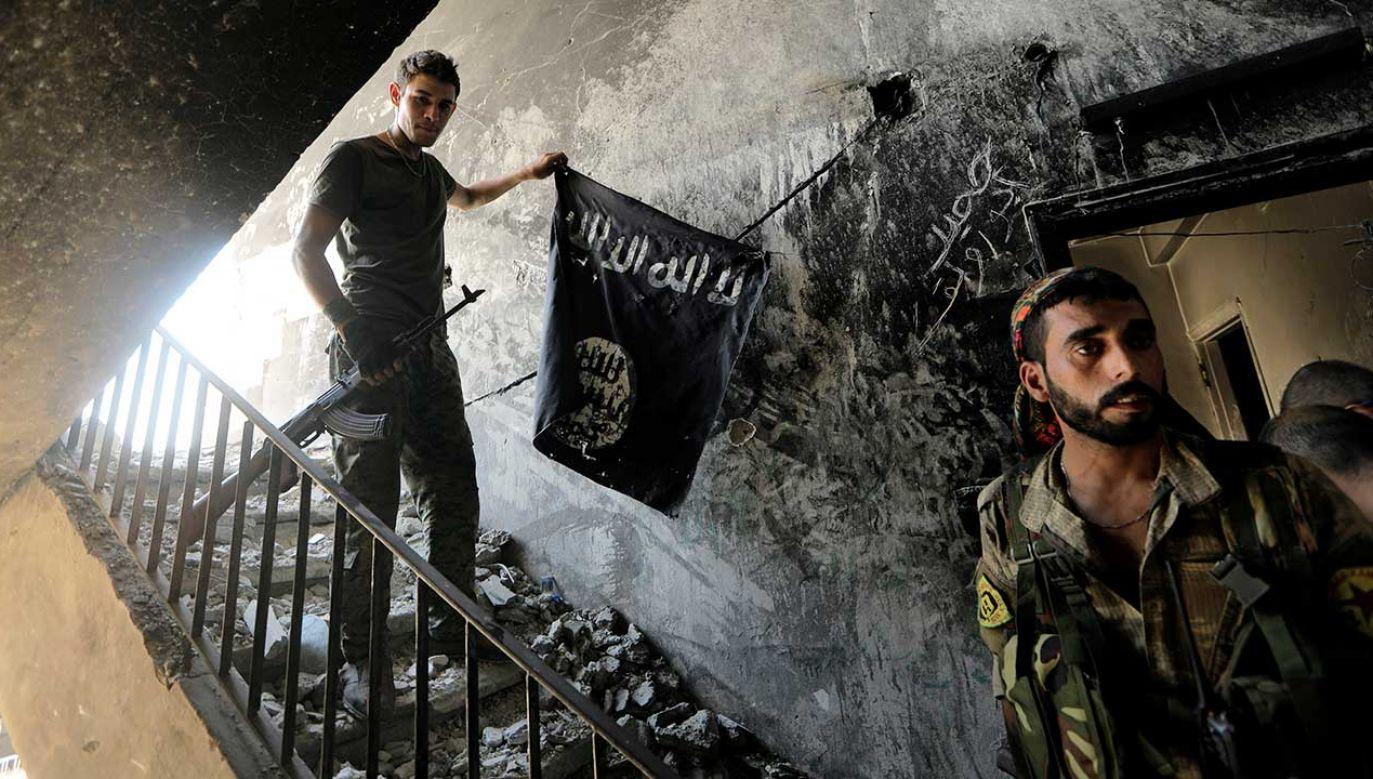 Wciąż trwają walki na polach w pobliżu miasta, gdzie bojownicy SDF ścigają dżihadystów (fot. REUTERS/Zohra Bensemra)