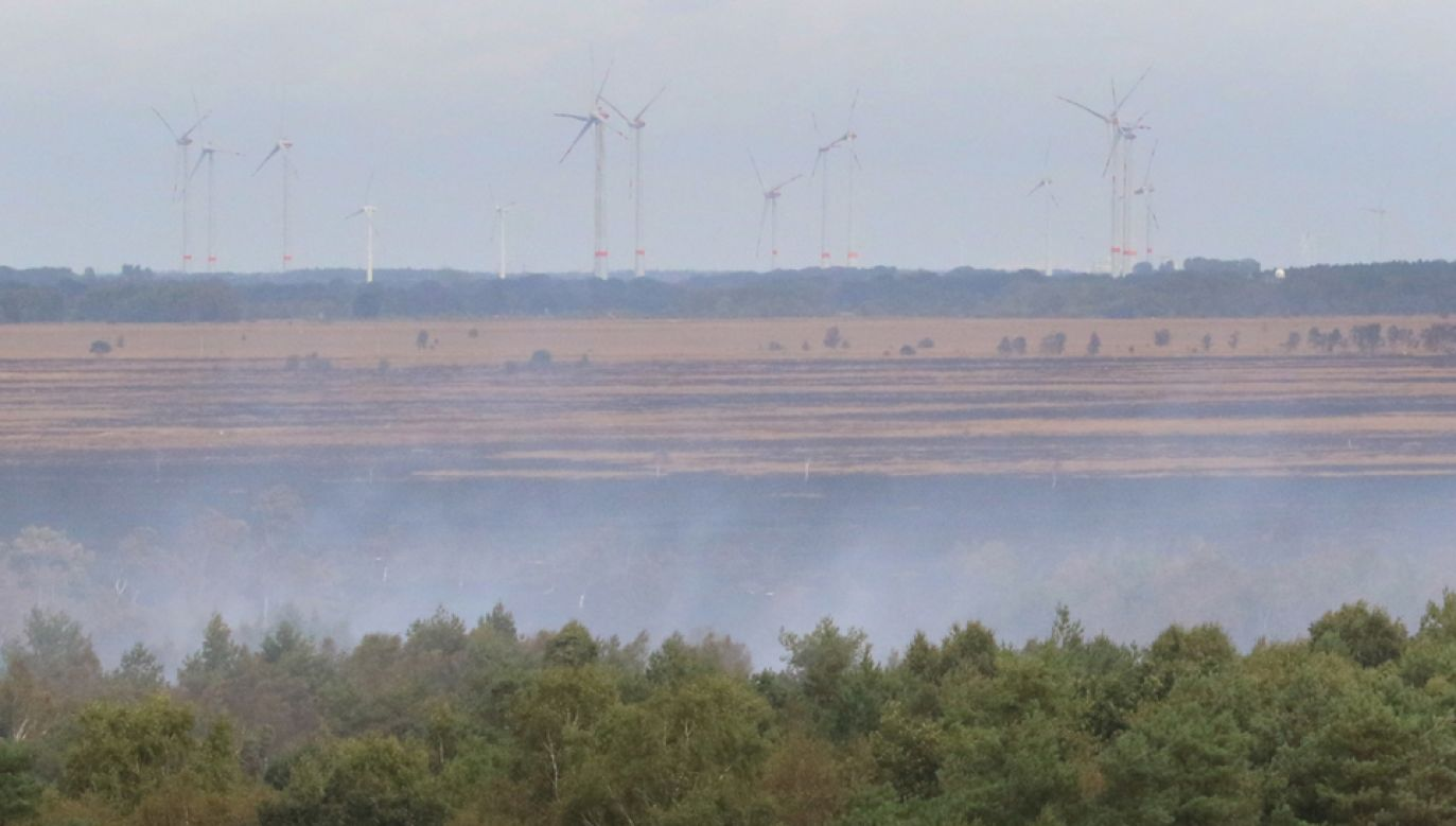 Pożar torfowiska wywołały testy pocisków rakietowych (fot. PAP/EPA/FOCKE STRANGMANN)