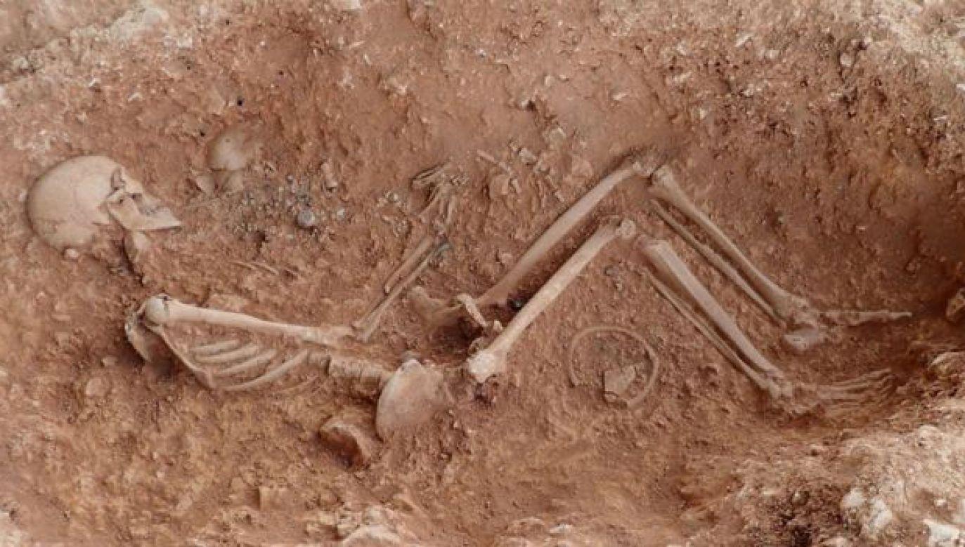 Znalezione groby pochodzą z V-VI w. (fot. UNIVERSITY OF SHEFFIELD)