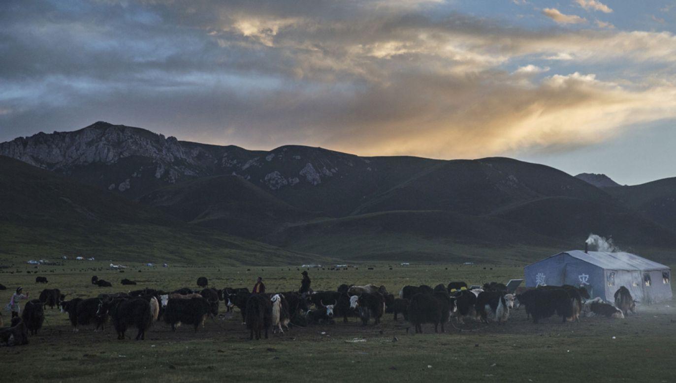 Trzęsienie ziemi nawiedziło Tybet  w sobotę rano (fot. Kevin Frayer/Getty Images)