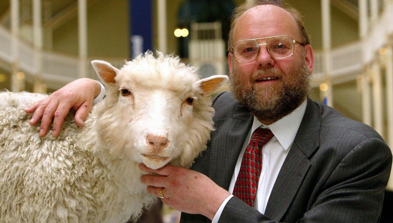 Profesor Ian Wilmut z Roslin Institute z pierwszym, naprawdę sklonowanym w 1996 r. ssakiem na świecie – owcą Dolly. 15 lat wcześniej Karl Oscar Illmensee twierdził, że sklonował trzy myszy. Okazał się oszustem. Fot. Maurice McDonald - PA Images / PA Images via Getty Images