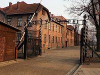"""Koniec kłamstwa powielanego od lat. """"Polacy nie zamordowali 200 tys. Żydów"""""""