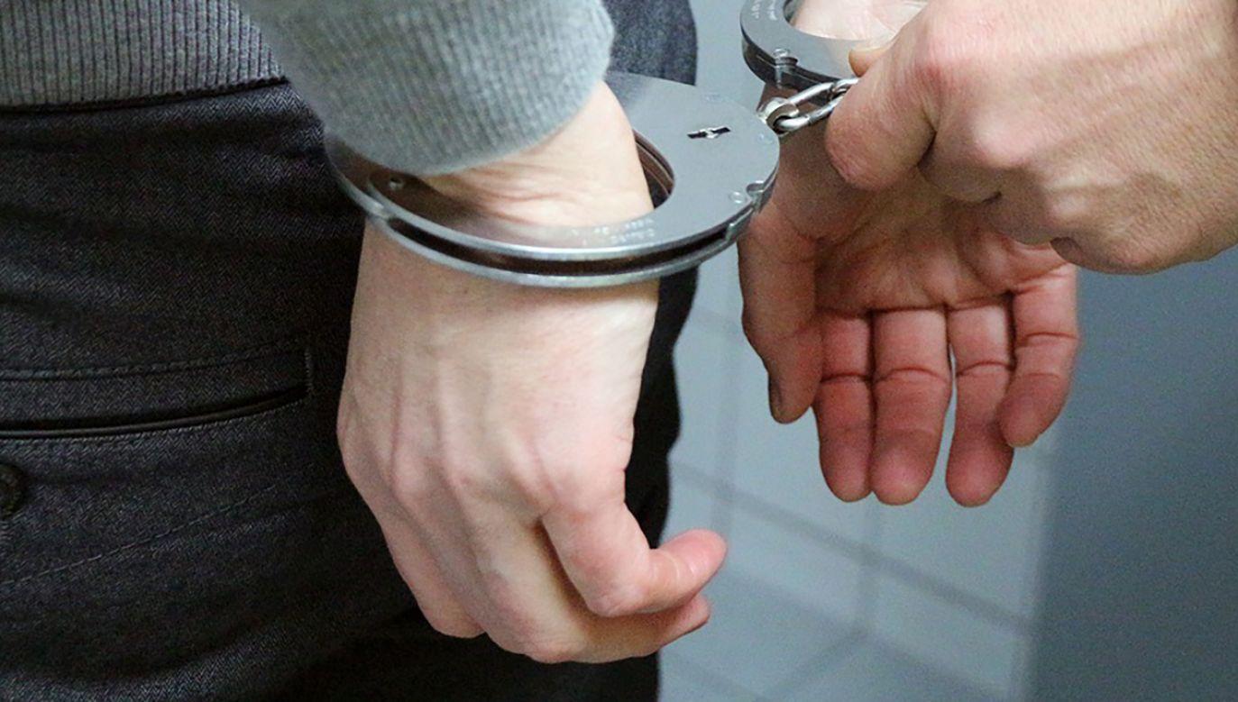 Prokuratura wystąpiła z wnioskiem o areszt dla Dariusza S. (fot. Pixabay/3839153)
