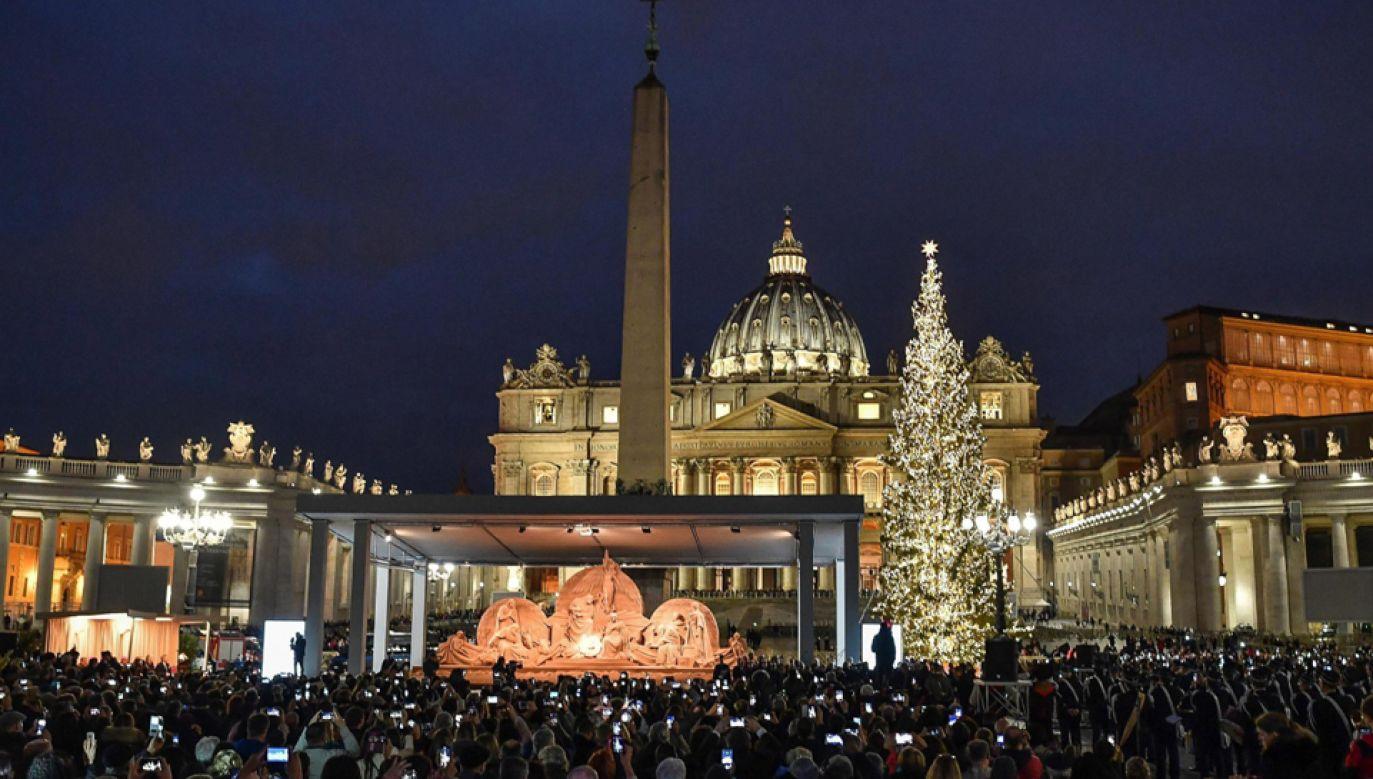 Bożonarodzeniowa choinka stanęła w piątek na Placu św. Piotra w Watykanie (fot. PAP/EPA/ALESSANDRO DI MEO)