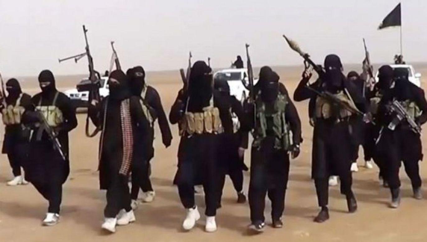 To pierwszy przypadek skazania obywatela Szwecji w Iraku za powiązania z dżihadystami (fot. ISIS/cc)