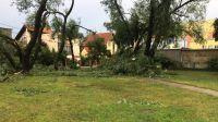 Połamane konary zatarasowały jedną z osiedlowych uliczek na Bartodziejach (fot. Aleksandra Droż)
