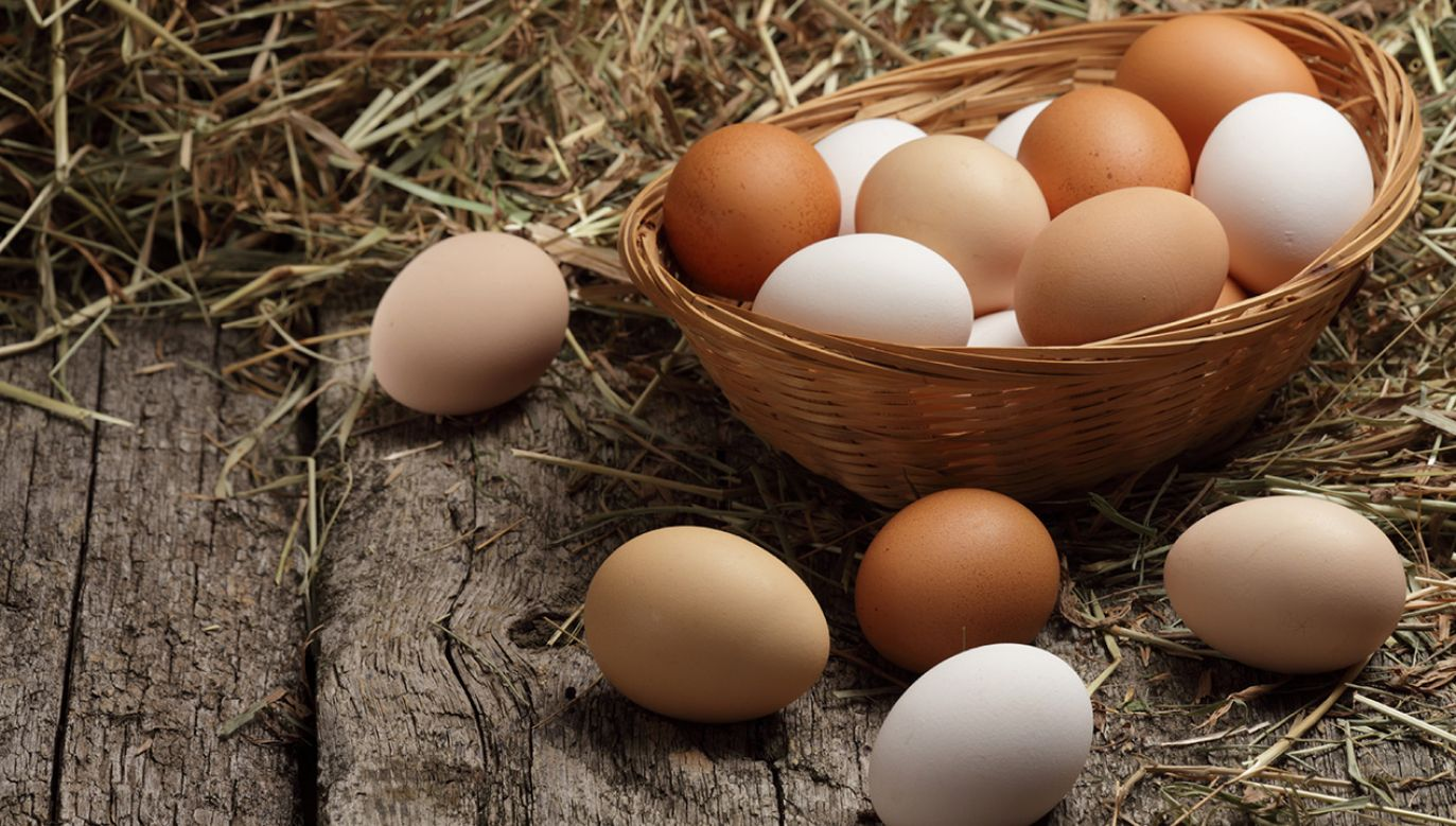 Kod na jajku jest nośnikiem cennych informacji (fot. Shutterstock/Shulevskyy Volodymyr)