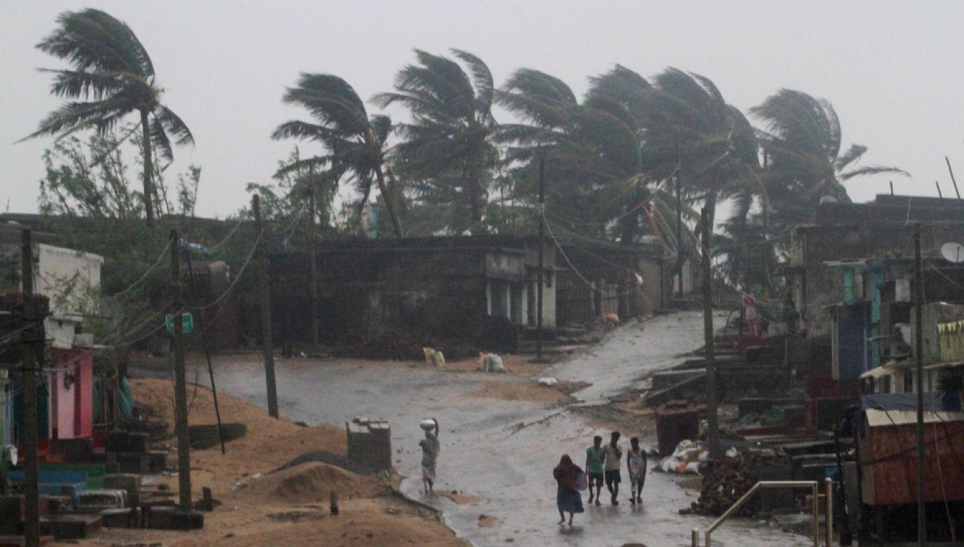 Huraganowy wiatr powalił ponad 30 tys. słupów energetycznych i 100 tys. drzew. (fot. STR/NurPhoto via Getty Images)