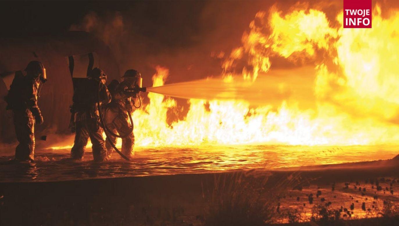 Pożar szybko udało się opanować (fot. Pixabay)