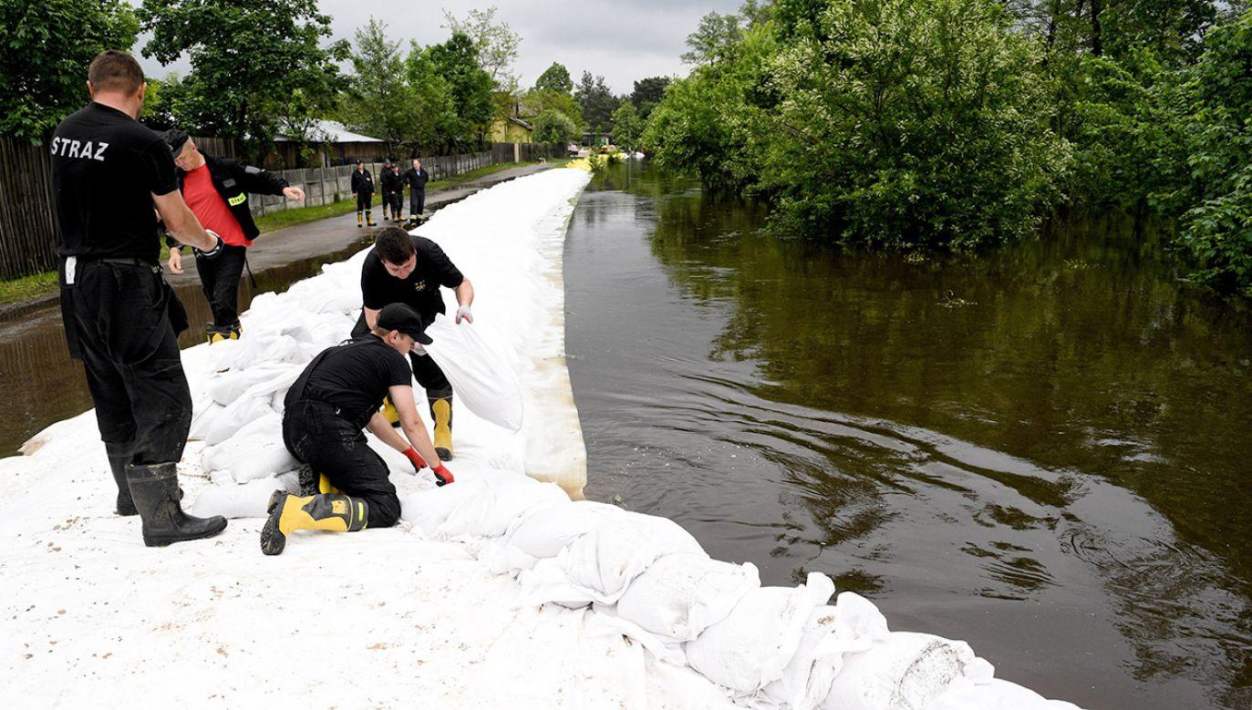 Politycy PO odwiedzili tereny powodziowe. Nakręcili spoty wyborcze (fot. PAP/Darek Delmanowicz)
