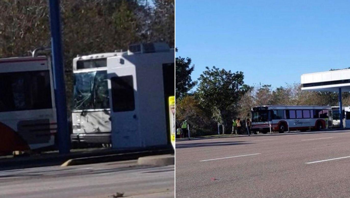 W obu autobusach znajdowało się łącznie 51 pasażerów (fot. WDW News Today)