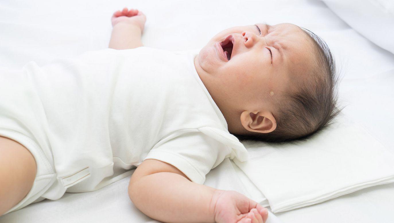 """To """"eksperyment na ludziach, którego nie da się obronić moralnie ani etycznie"""" – ocenił jeden z ekspertów (fot. Shutterstock/alice-photo)"""