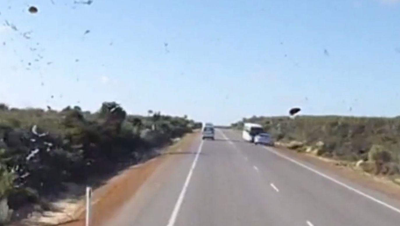 Policja opublikowała dramatyczne nagranie (fot. socialnewswire.com)
