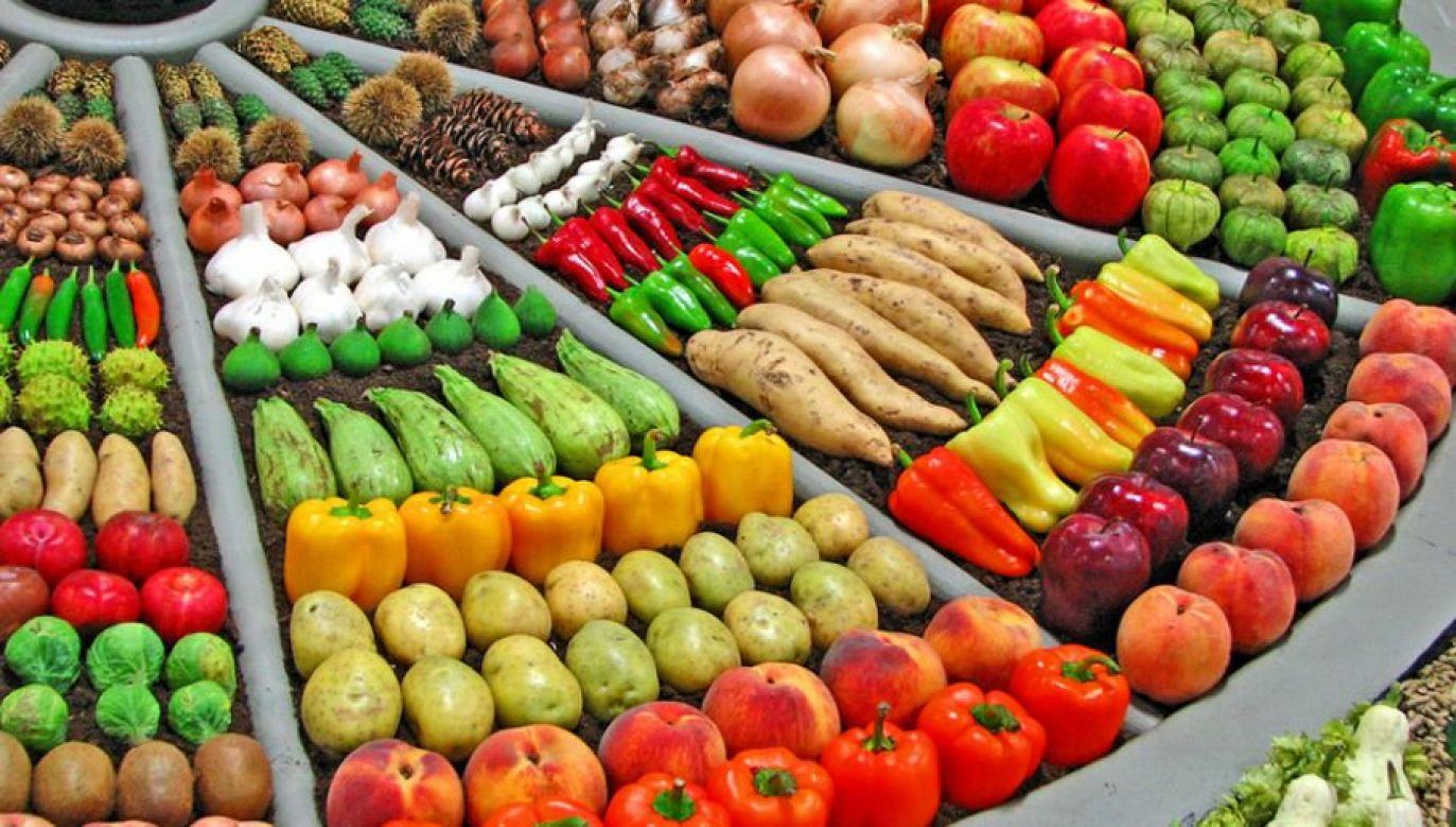 Żeby wyprodukować taką samą ilość żywności ekologicznej, potrzeba dużo większego areału (fot. Flickr/Nancy Regan)
