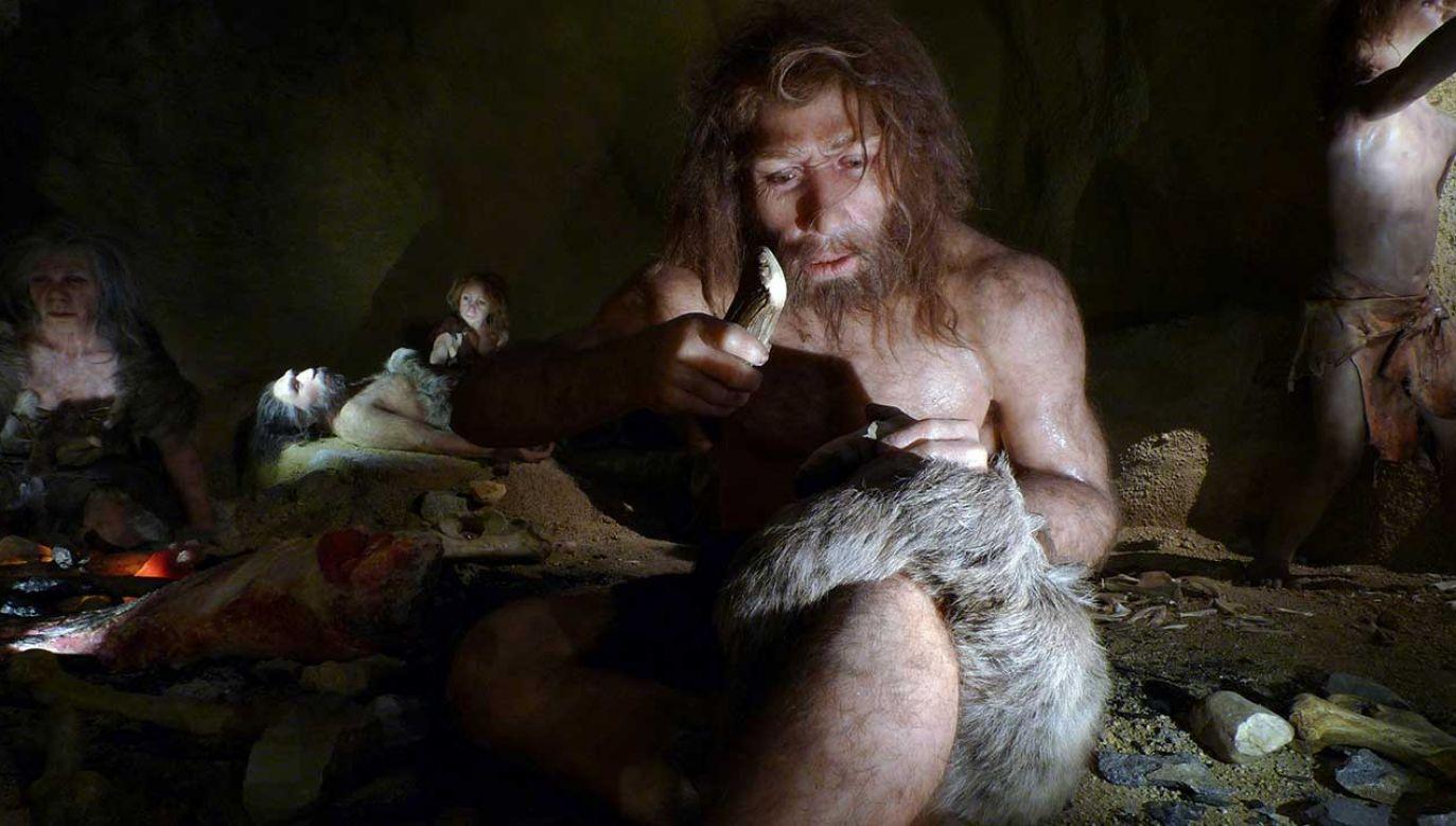Ekspozycja przedstawiająca życie neandertalskiej rodziny w  (fot. REUTERS/Nikola Solic)