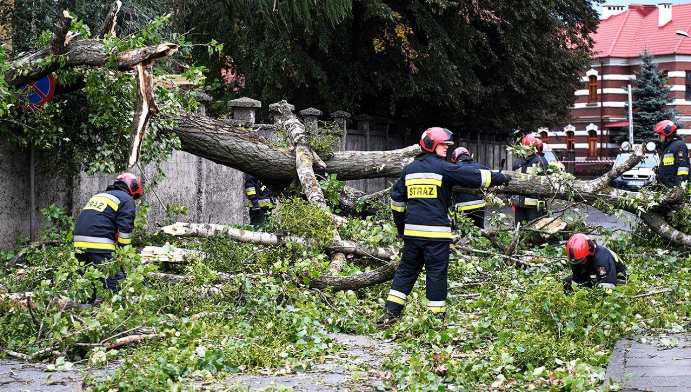 W wyniku nawałnic rannych zostało dziewięć osób, w tym czterech strażaków (fot. PAP/Darek Delmanowicz)