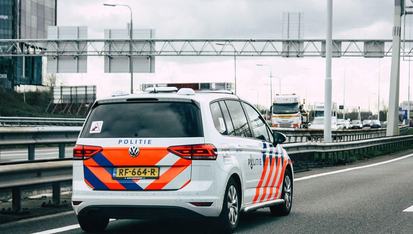 Funkcjonariusze, po wstępnej analizie toru jazdy stwierdzili, że kierujący pojazdem nagle zjechał z drogi i najechał na krawężnik (fot. Shutterstock/Jose HERNANDEZ Camera 51)