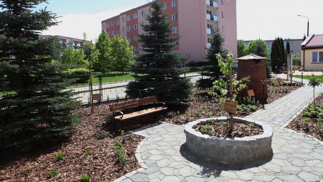Ogród biblijny w Lidzbarku Warmińskim (fot. fb/Parafia św. Andrzeja Boboli w Lidzbarku Warmińskim)