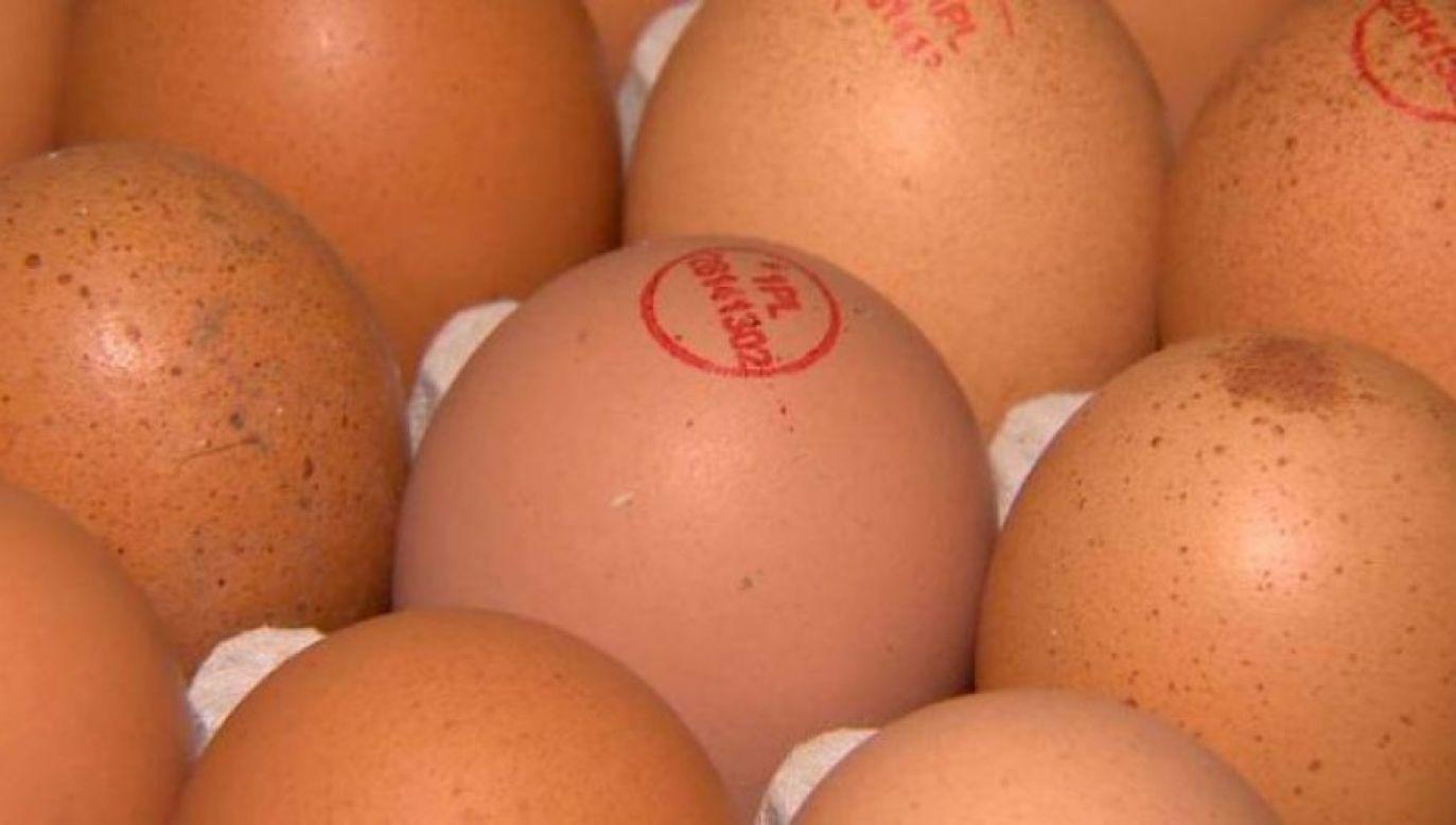 The coding on the eggshells is 3-PL 30211306. Photo: tvp olsztyn