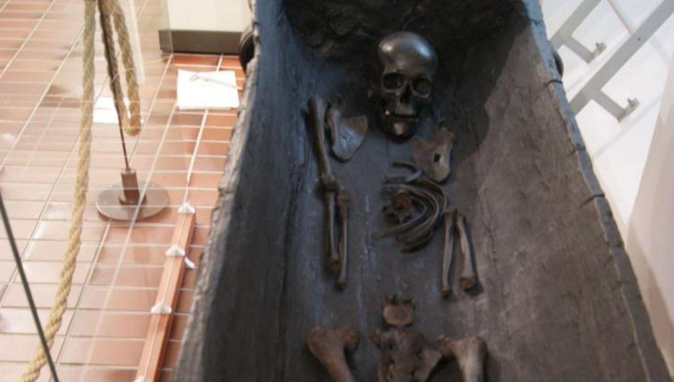 Szczątki zmarłej sprzed 2 tys. lat złożono w drewnianej kłodzie (fot. Nauka w Polsce/R. Fetner)