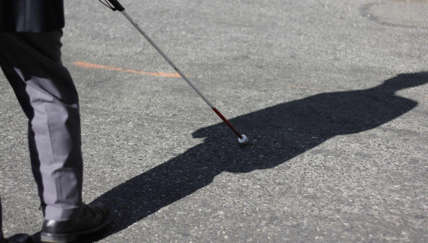 Umiejętność echolokacji może przydać się osobie niewidomej (fot. flickr.com/Timothy Krause)