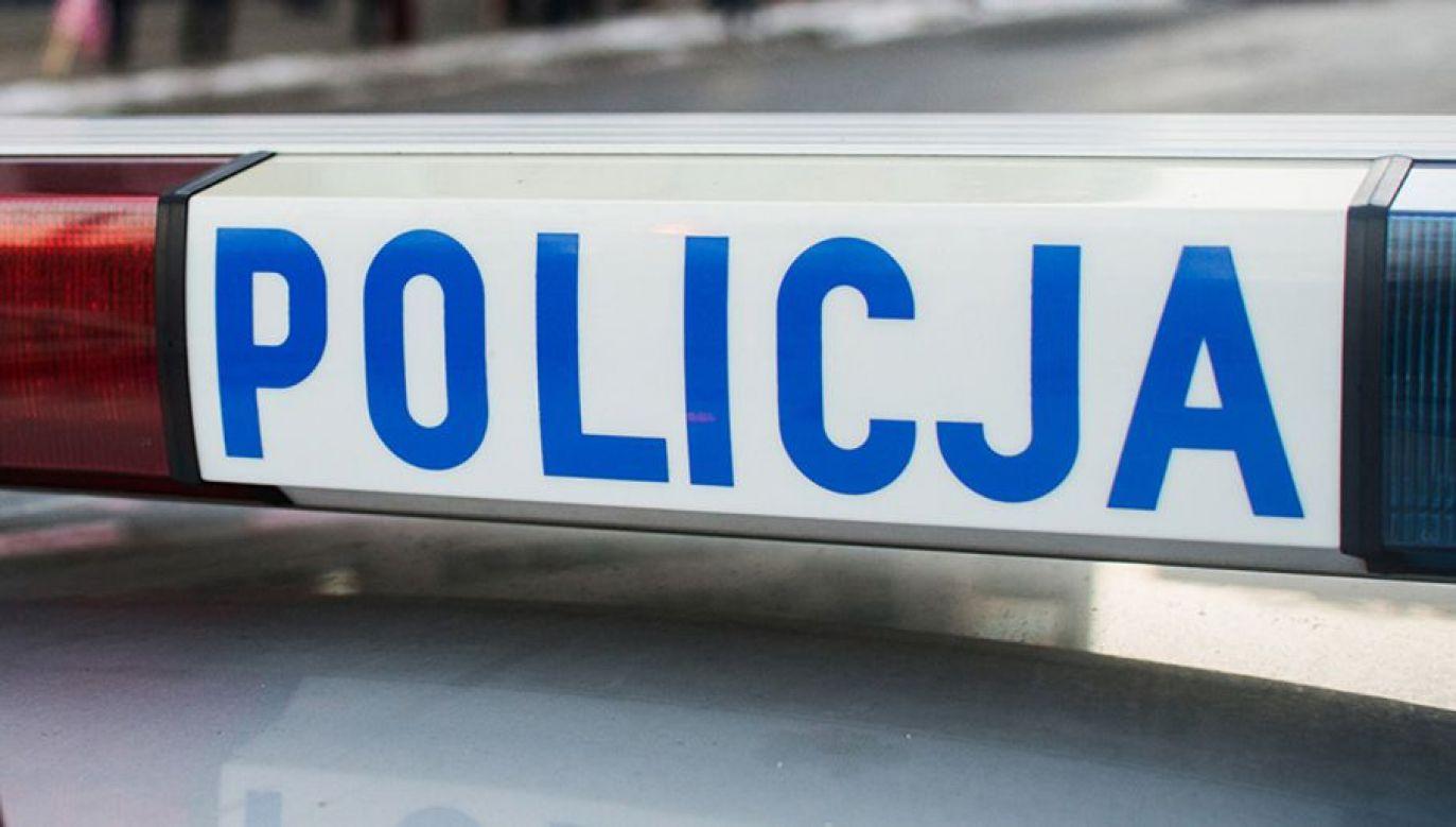 Poszkodowanych zostało dwóch policjantów  (fot. policja.pl)