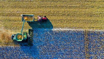 Z dopłat bezpośrednich korzysta ponad 1,3 mln polskich rolników (fot. Pexels)