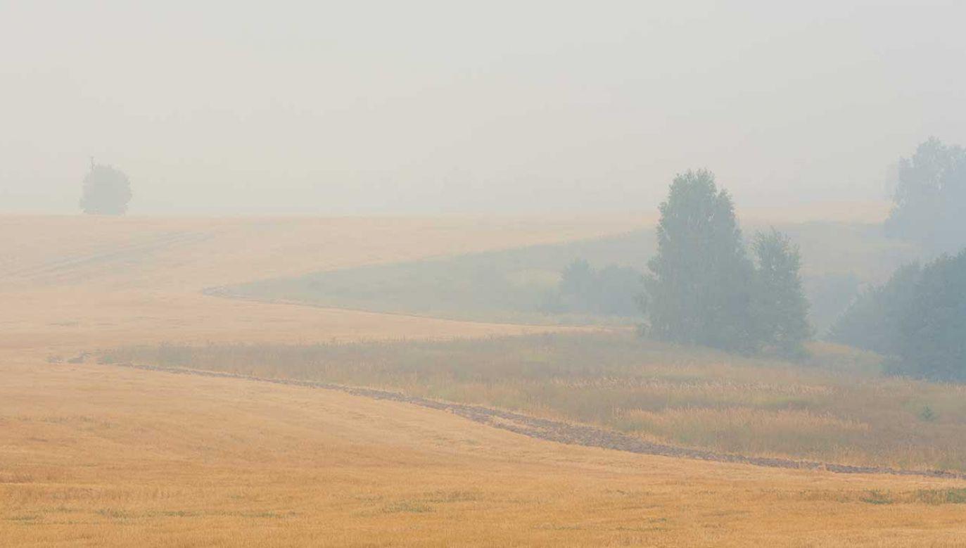 Wraz z pyłem z południa napłynie do Polski gorące powietrze zwrotnikowe (fot. Shutterstock)