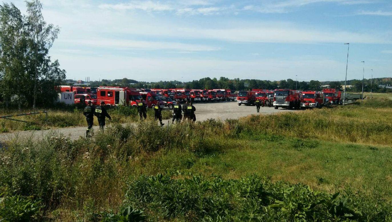 Strażacy zmierzają do centralnej Szwecji walczyć z trawiącymi tamtejsze lasy pożarami (fot. Twitter/MSWiA)