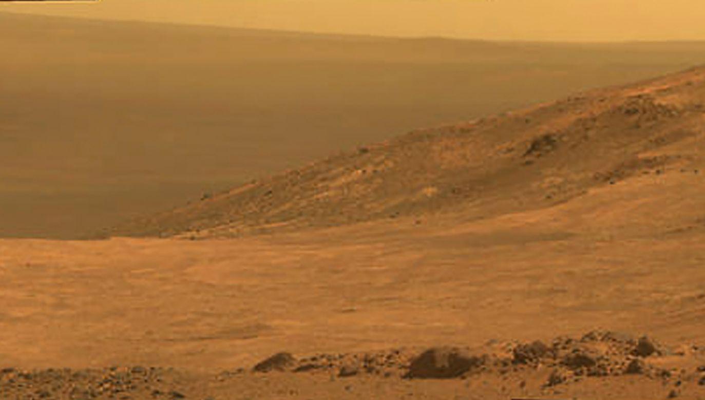 Marsjański łazik Opportunity wylądował na planecie na początku 2004 r.  (fot. REUTERS/NASA)