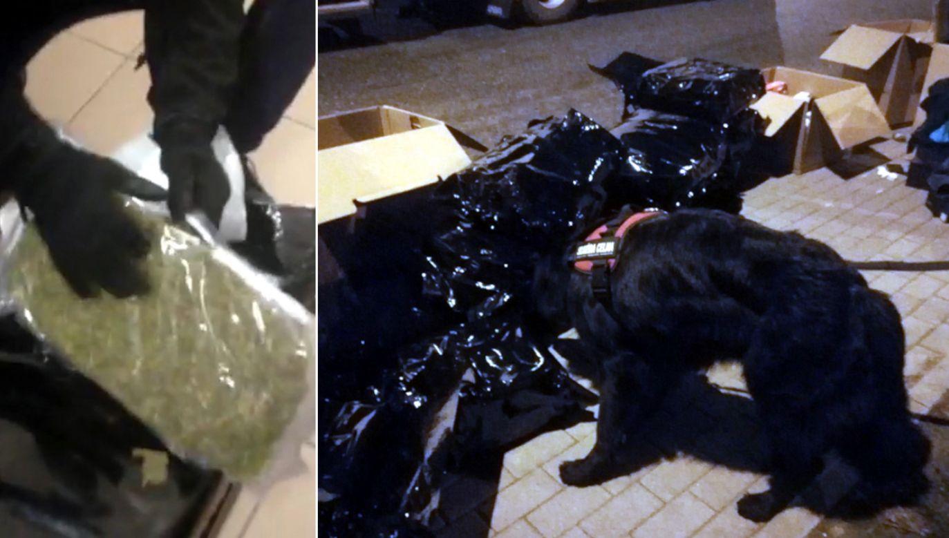 Narkotyki zostały przejęte w województwie łódzkim (fot. cbsp.policja.pl)