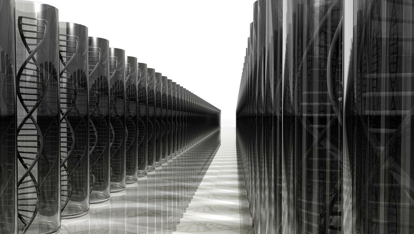 Wartość rynku testów genetycznych szacuje się na setki milionów złotych (fot. pixabay)