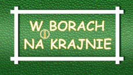 W Borach i na Krajnie