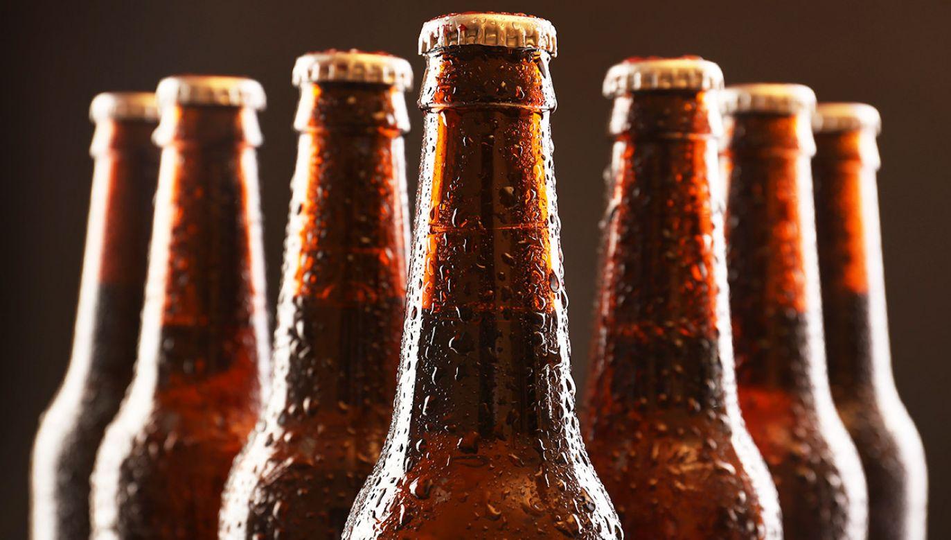 Niedobór jęczmienia pociągnie za sobą horrendalny wzrost cen piwa (fot. Shutterstock/Africa Studio)