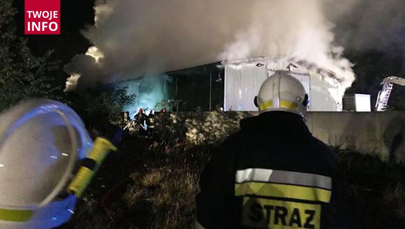 Z ogniem walczy około 30 zastępów strażaków (fot. Twoje Info)