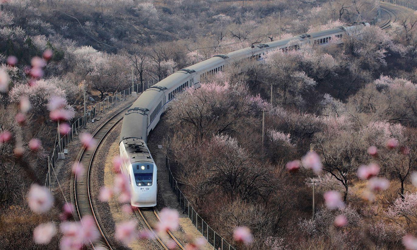 (fot. REUTERS/Ding Bangxue/Qianlong)