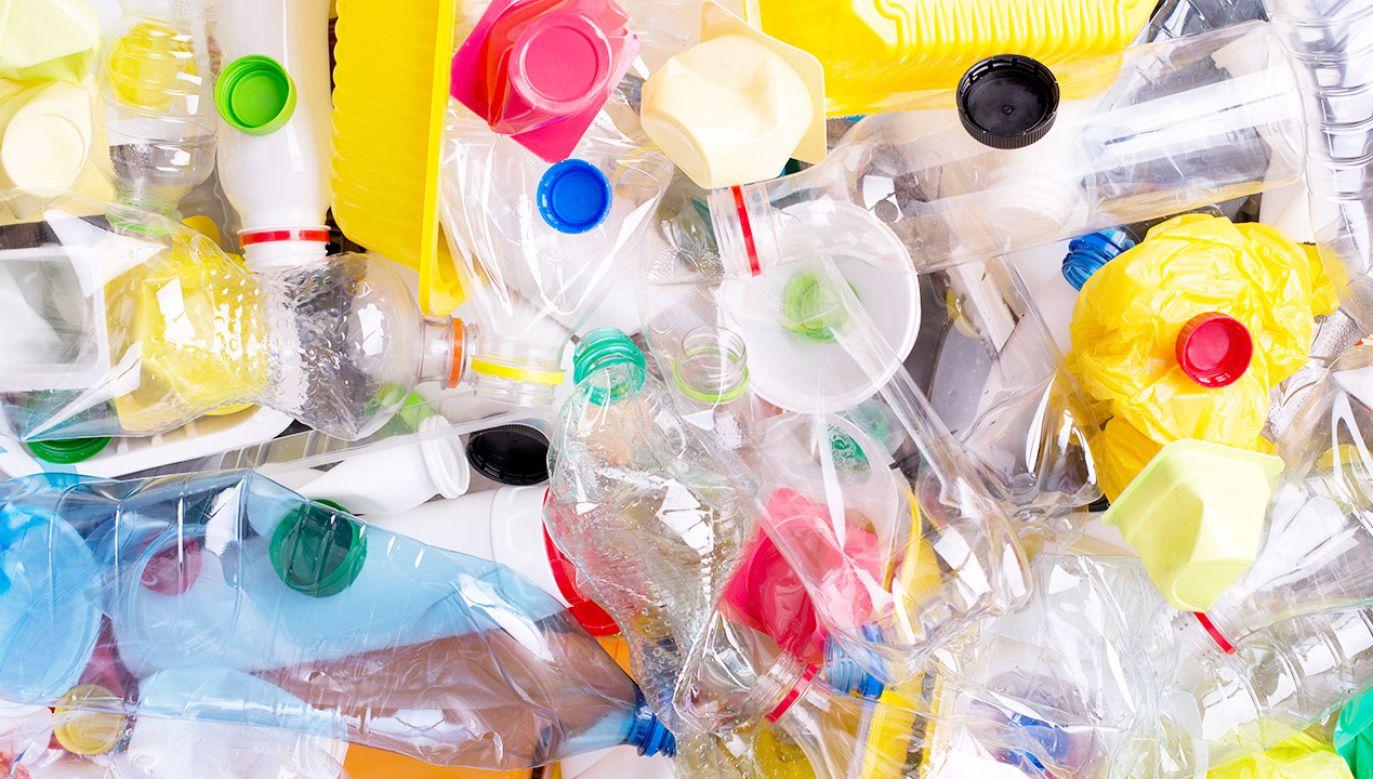 Obywatel UE produkuje średnio 31 kg plastikowych odpadów rocznie (fot. Shutterstock/photka)
