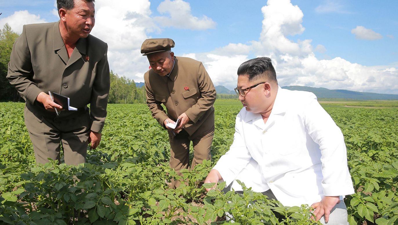 Spadek produkcji w wyniku sankcji ONZ w najmniejszym stopniu dotknął rolnictwo (fot.  KCNA/via REUTERS)