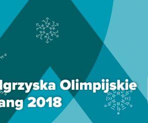 Zimowe Igrzyska Olimpijskie w PjongCzang 2018
