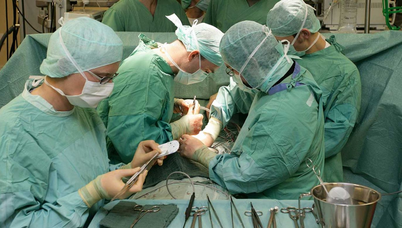 Zdaniem naukowców tę samą metodę można zastosować także do odbudowy innych narządów (fot. ARCH. pap/dpa/Peter Steffen)