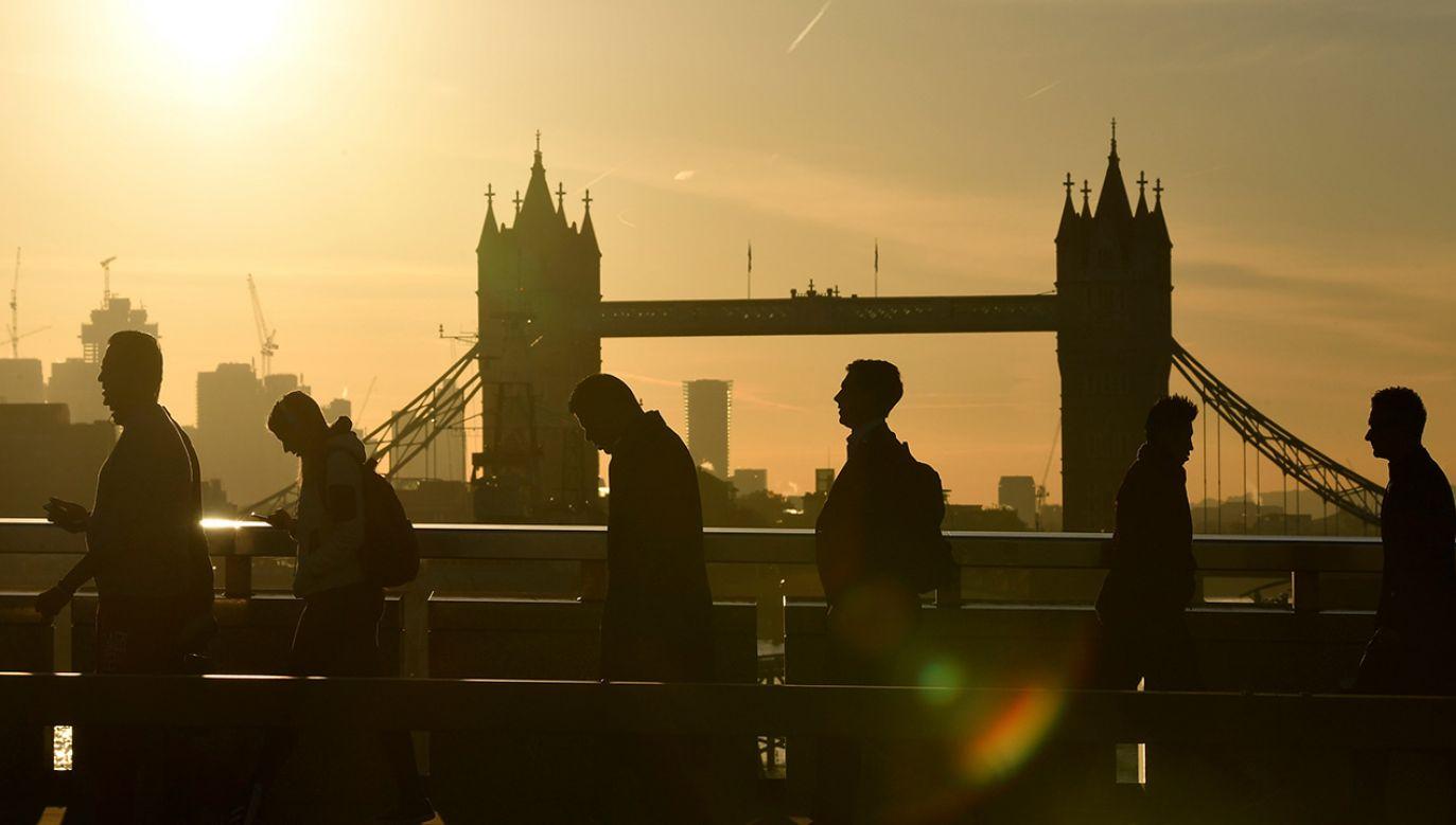 Według ubiegłorocznych danych w Wielkiej Brytanii mieszkało nieco ponad milion obywateli z Polski (fot. REUTERS/Toby Melville)