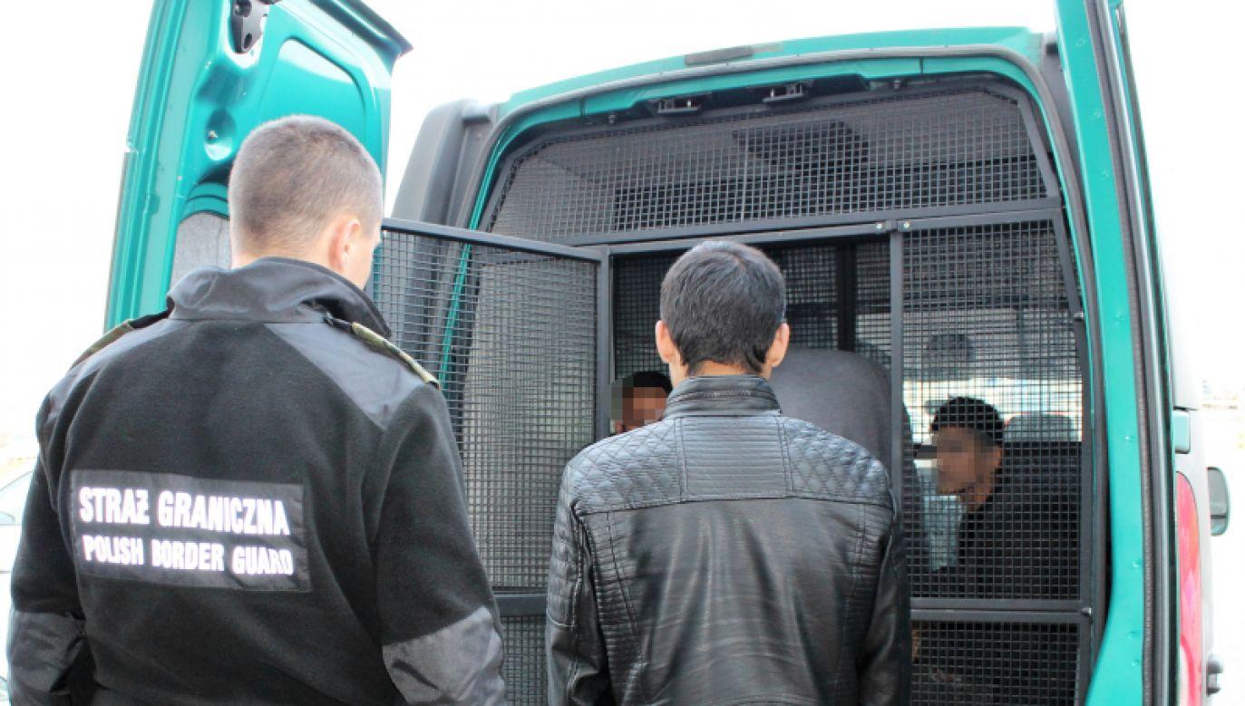 Mężczyźni nie posiadali przy sobie żadnych dokumentów (fot. Śląski Odział Straży Granicznej)