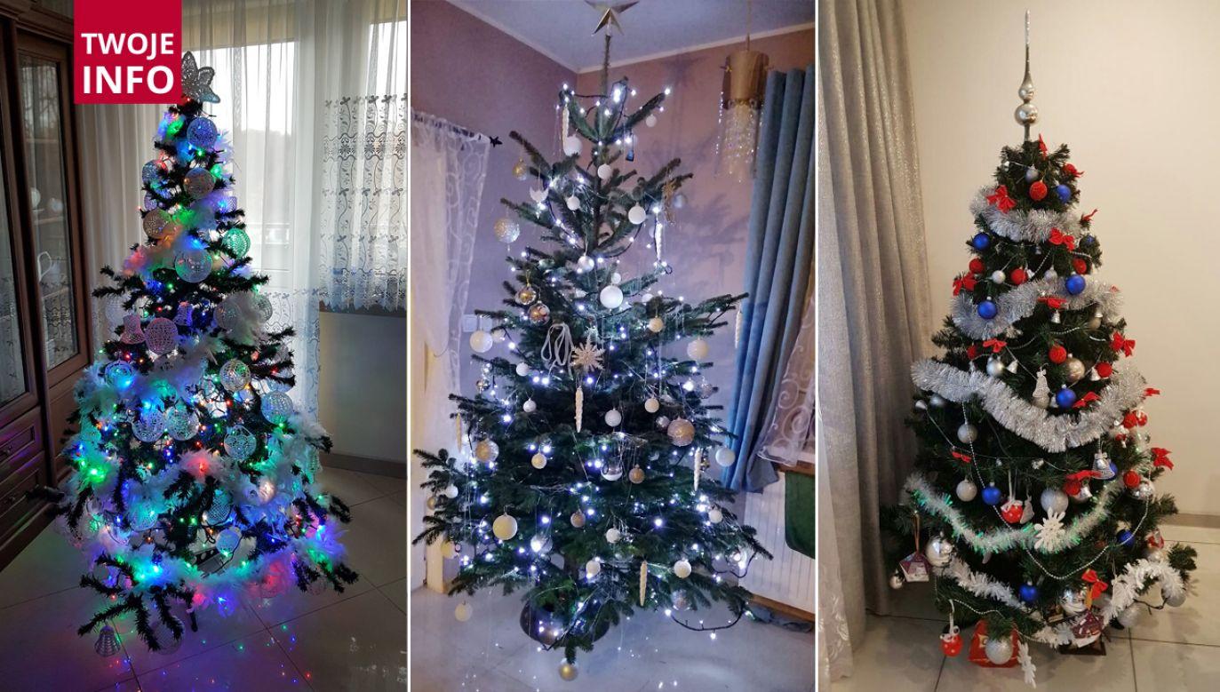 Zespół Twoje Info czeka na Wasze świąteczne drzewka (fot. Twoje info)
