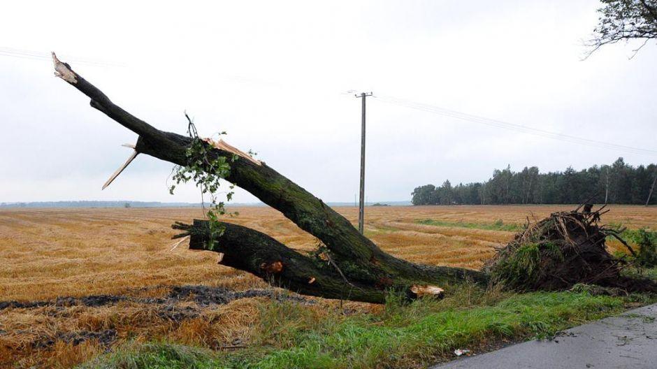 Okolice Szubina (fot. itvszubin.pl)